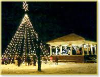 The Green of Homer, New York, at Christmas